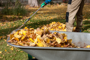 Seasonal Yard Clean Up in Huntsville